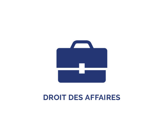 icon-droits-affaires